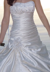 Wedding Dress Picture - Thumb
